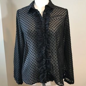 NWT Zara Polka Dot Sheer Ruffled Button Down